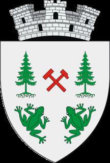 ROU_SV_Brosteni_CoA