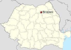 brosteni1