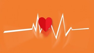 cardiolog